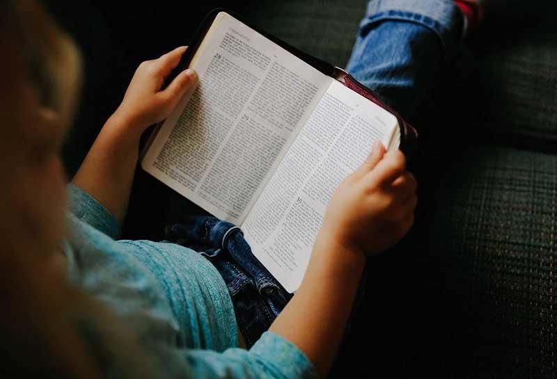 IELTS Reading – IELTS PRO